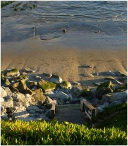 The stairs at 38th Ave, low tide